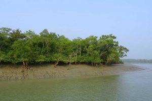 Best travel spot Bangladesh Sundarbans
