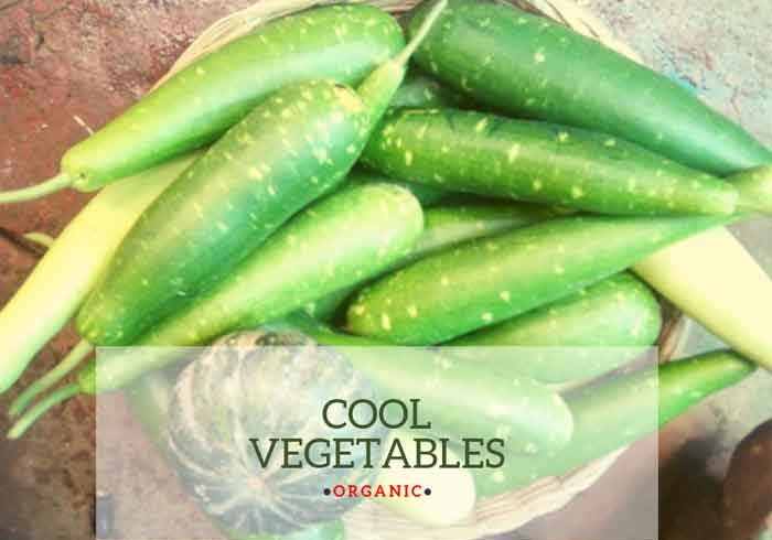 Cool-vegetables